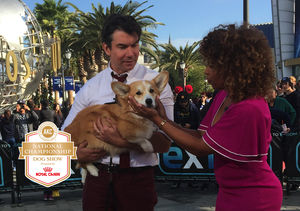 Jerry O'Connell Chats About This Year's AKC National Championship Presented…