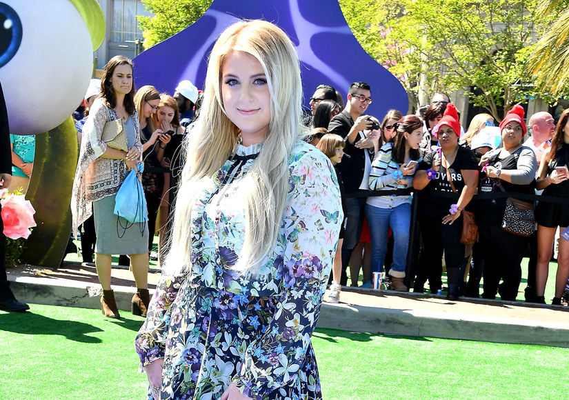 Meghan Trainor's Big Reveal About Her Engagement Ring