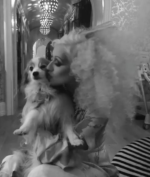 Christina Aguilera Says Goodbye to Beloved Pooch Stinky