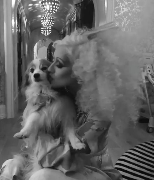 Christina Aguilera Says Goodbye to Beloved Pooch Stinky