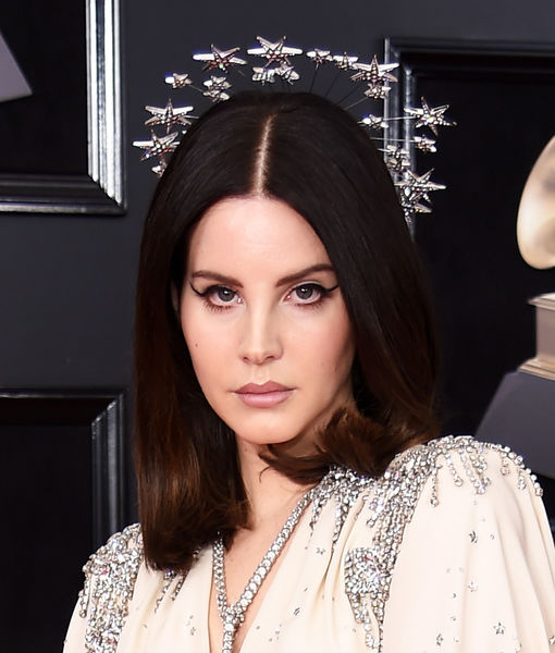 Man Arrested for Allegedly Attempting to Kidnap Lana Del Rey