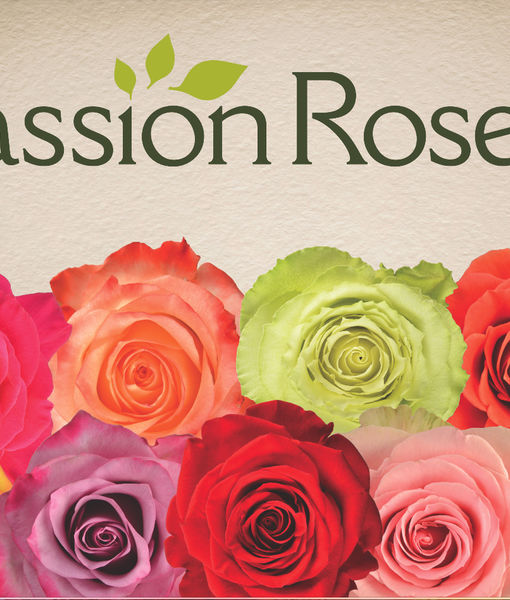 Win It! A Dozen Roses from PassionRoses
