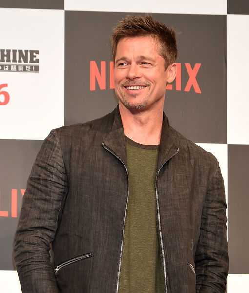 Rumor Bust! Brad Pitt Is Not Quitting Hollywood to Become Beekeeper