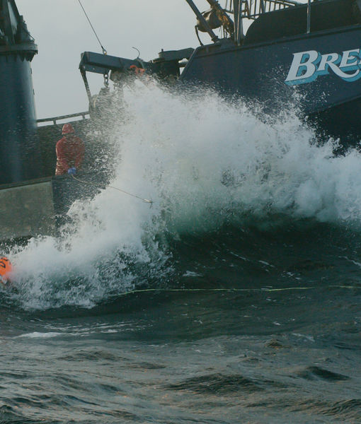 Man Overboard! A Heart-Pounding First Look at 'Deadliest Catch' Season 14