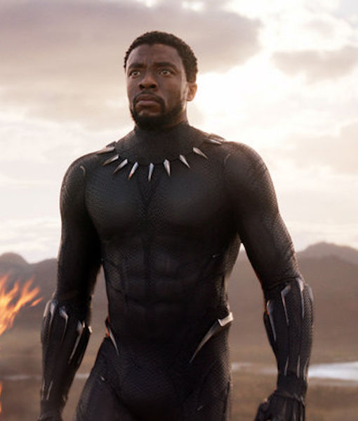 'Black Panther' Is Now Third-Highest-Grossing Film Ever!