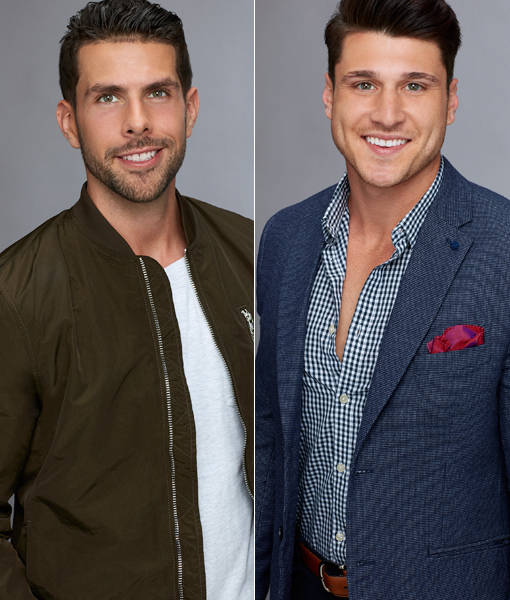 Chris Randone & Connor Obrochta Join 'Bachelor in Paradise'