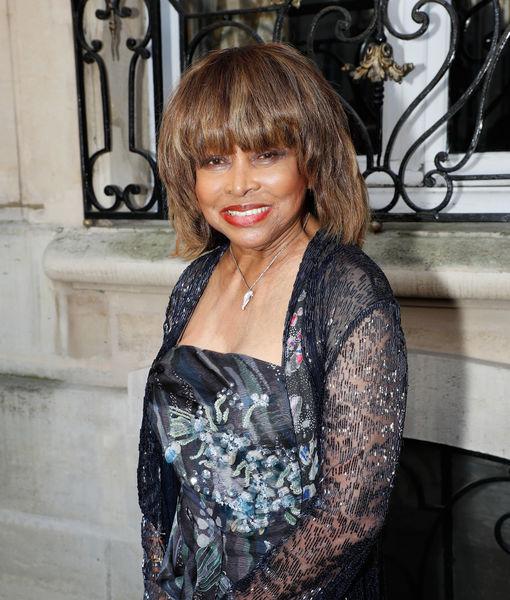 Tina Turner Nude Photos 39
