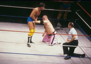 Legendary Wrestler Jim 'The Anvil' Neidhart Dead at 63