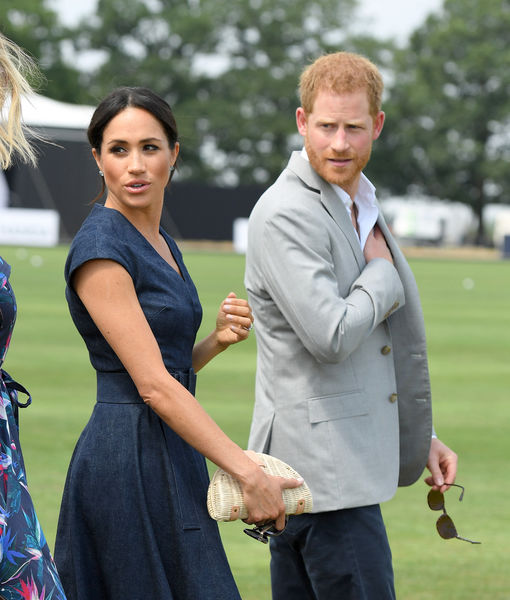 Meghan & Harry Have a New Dog!
