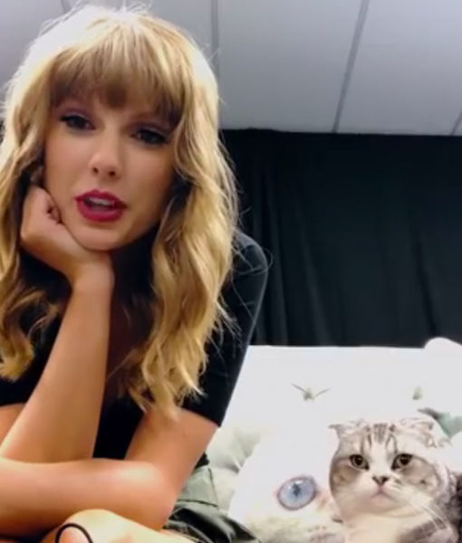 Taylor Swift to Open American Music Awards… and Her Cat Is Not Impressed