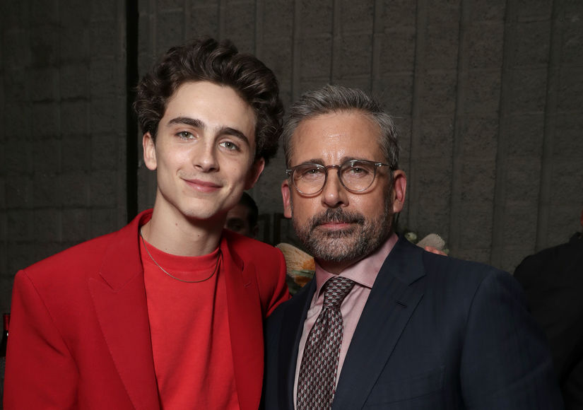 Timothée Chalamet Instantly Connected with Steve Carell on 'Beautiful Boy'