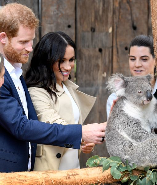 Pics! Prince Harry & Meghan Markle's Royal Visit to Australia