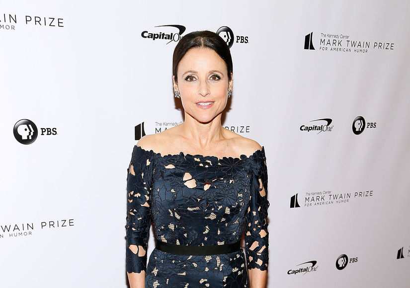 Julia Louis-Dreyfus Talks Cancer Battle, Plus: Her Take on 'Seinfeld' Reboot