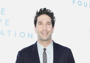 David Schwimmer Talks Reuniting with 'Friends' Co-Stars for Highly Anticipated…