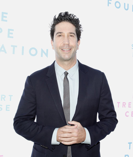 David Schwimmer's Epic Reaction to His Doppelgänger Suspected of Theft