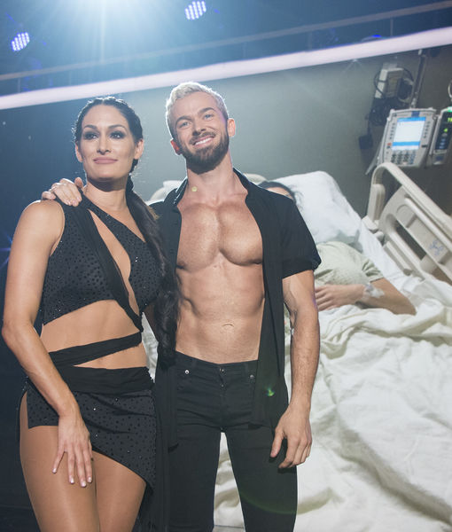 New Couple Alert? Nikki Bella & 'Dancing with the Stars' Partner Artem…