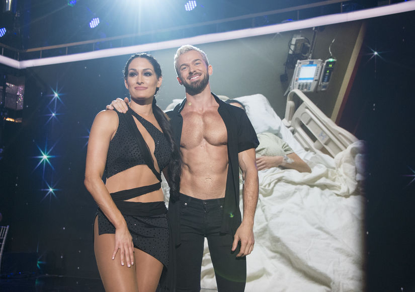 New Couple Alert? Nikki Bella & 'Dancing with the Stars' Partner Artem Chigvintsev Spark Dating Rumors