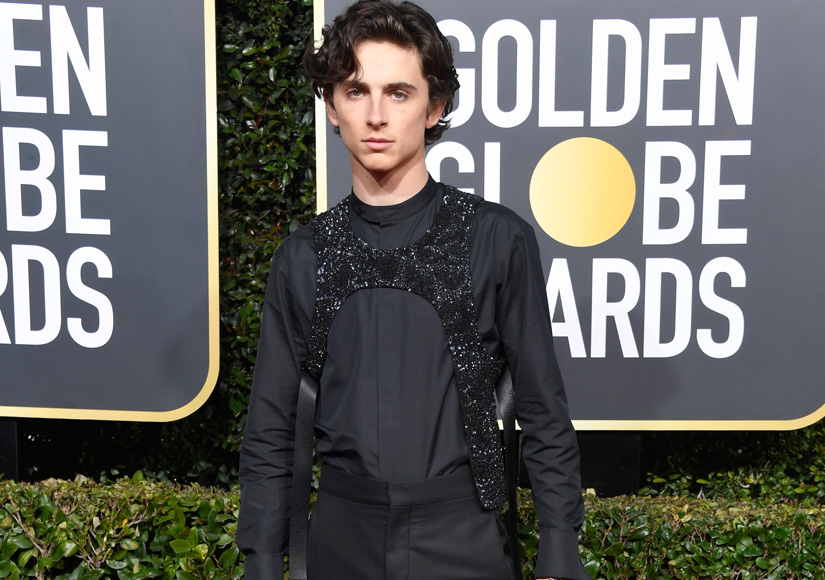 timothee-chalamet-lores-getty
