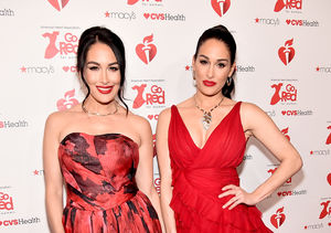Brie Bella Describes the Perfect Guy for Nikki