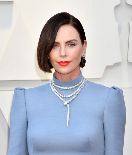 Charlize Theron Hits the Oscars Red Carpet as a Brunette