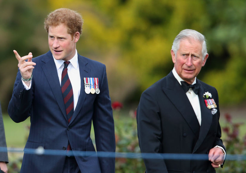 Rumor Bust! Prince Charles Did Not Ban Prince Harry over Tests Proving They Aren't Related