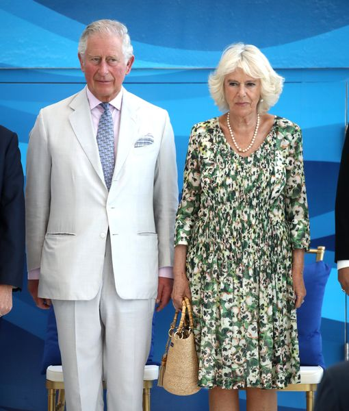 Rumor Bust! Queen Elizabeth Is Not Forcing Prince Charles to Divorce Camilla