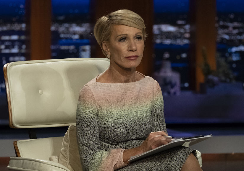Barbara Corcoran's Brother Dies on Dominican Republic Vacation