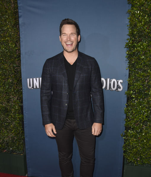 Chris Pratt Reveals How He Met Wife Katherine Schwarzenegger