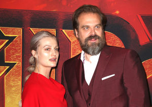David Harbour & Alison Sudol Split — Has He Already Moved On to a Famous…