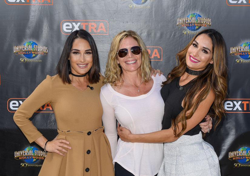 Bella Twins Give Update on Mom After Brain Surgery