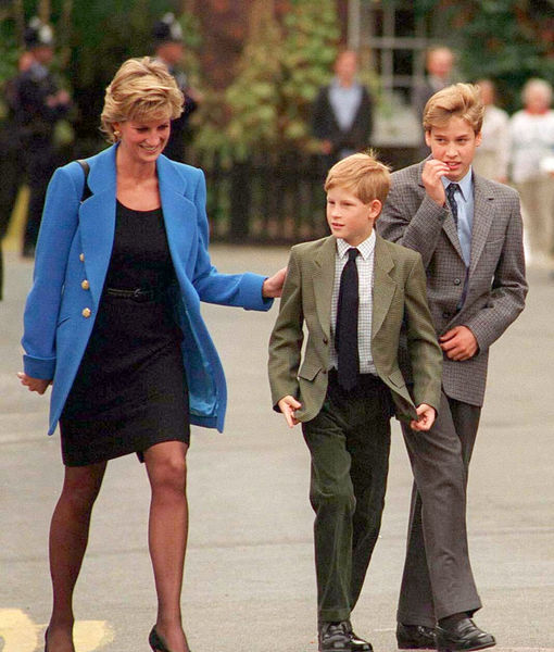 Prince William & Prince Harry Reunite for Joint Statement on Diana