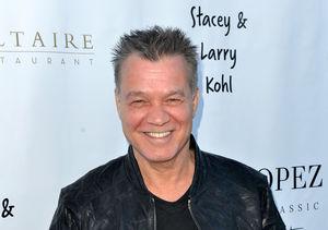 Eddie Van Halen's Theory About Guitar Picks and Cancer