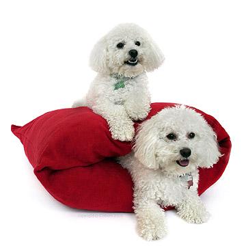 redburrowbed2dogs.jpg